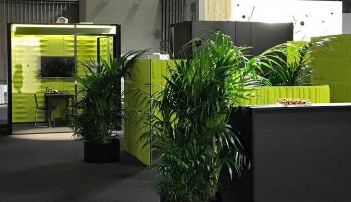 arredamento ufficio piante e benefici