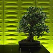 piante arredamento ufficio monza como lecco sondrio